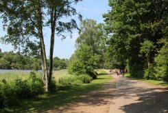 Path beside Virginia Water Lake, Virginia Water
