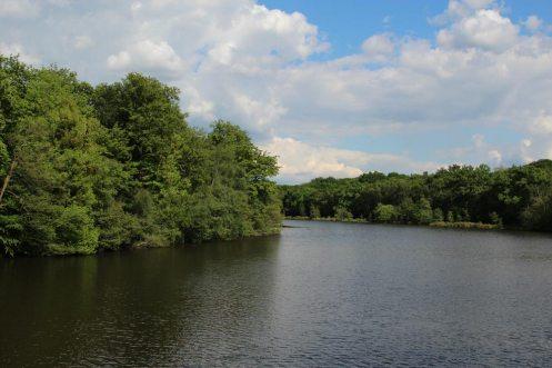 Virginia Water Lake, from Five Arch Bridge, Virginia Water