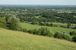 Brockham and South Downs, from Box Hill