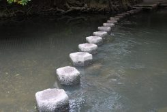 Stepping Stones across River Mole, foot of Box Hill