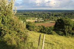 Surrey Weald, from Box Hill. London 2012 Olympic Cycling Road Race