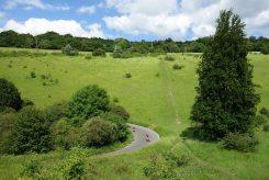 Zig Zag Road and Lodge Hill, Box Hill