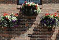 A Celebration of Farnham's Great Names, Farnham
