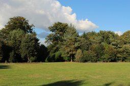 Amphitheatre, Painshill Park, Cobham