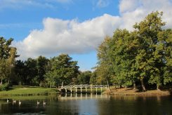 Chinese Bridge, Painshill Park, Cobham