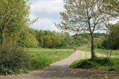 Central Forest Park, from Wayte Street, Hanley, Stoke-on-Trent