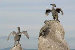 Cormorant Sculptures, Stone Jetty, Morecambe