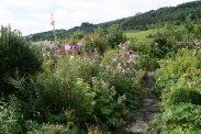 Garden in the Courtyard, Stokesay Castle