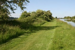 Path along Gloucester and Sharpness Canal, Purton
