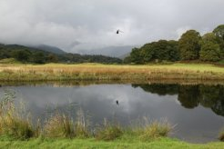 Helicopter over River Brathay, Elterwater