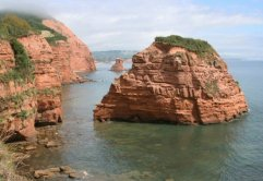 Hern Rock, Ladram Bay, near Sidmouth