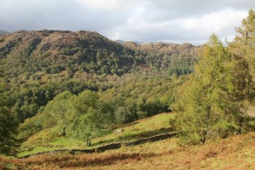 Holme Fell and Langdale Pikes, from above Tarn Hows