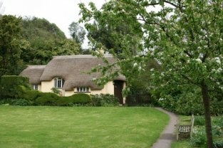 Ivy's Cottage, Selworthy Green, Selworthy