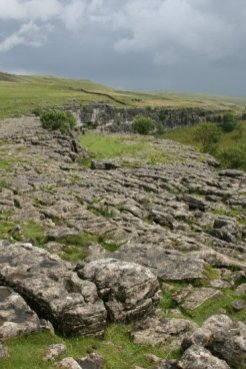Limestone Pavement, Malham Cove