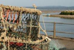 Lobster pots, Mudeford Quay, Mudeford
