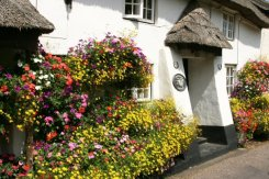 Longview Cottage, Church Row, Branscombe