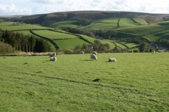 Lorna Doone Country, near Malmsmead, Exmoor