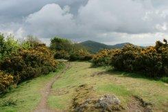 Malvern Hills, looking south