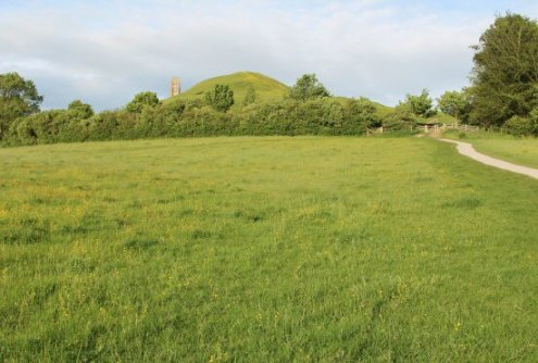 Meadow below Glastonbury Tor, Glastonbury