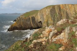Morte Point and Long Rock, Baggy Point