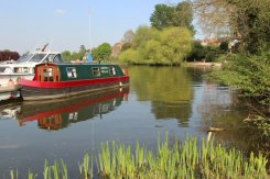 Narrow boat, River Thames, Walton-on-Thames
