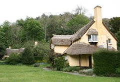 Periwinkle Cottage Tea Rooms, Selworthy Green, Selworthy