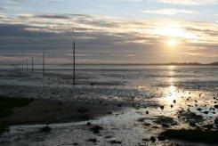 Pilgrims Way, across Holy Island Sands, Lindisfarne