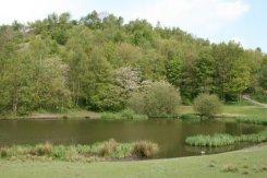 Reclaimed coal slag heap, Central Forest Park, Hanley, Stoke-on-Trent