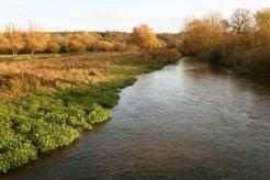 River Avon, Breamore