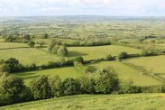 Somerset Levels, from Glastonbury Tor, Glastonbury