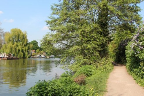 Towpath, River Thames, Walton-on-Thames