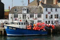Vaughan's and 'Portland Isle' fishing boat, Harbour, Weymouth