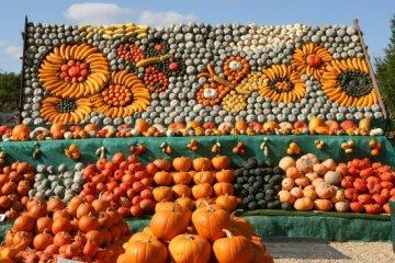 Ralph Upton, The Pumpkin Man, Slindon. 2009