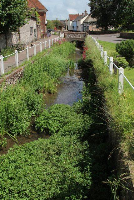 River Meon, East Meon