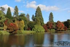 Middle Lake, Sheffield Park Garden