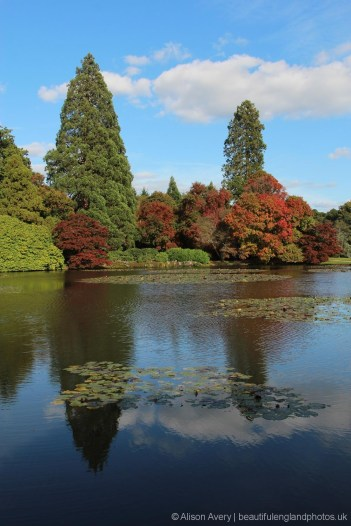 Middle Lake, Sheffield Park Garden