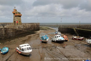 Rhenish Tower and Harbour, Lynmouth