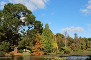 Ten Foot Pond, Sheffield Park Garden