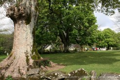 Village Green, Widecombe-in-the-Moor