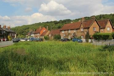 Village Pond, Aldbury