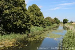 Royal Military Canal, Appledore