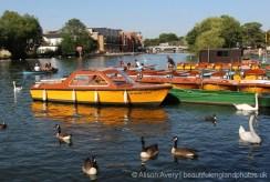 Motor boats, River Thames, Windsor