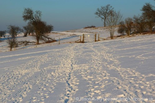 Snow, Dunstable Downs