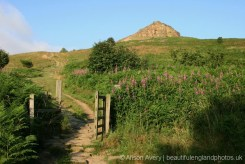 Path up Roseberry Topping, North York Moors