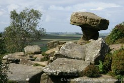 Druid's Writing Desk, Brimham Rocks