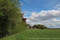 Countryside, Brightwell-cum-Sotwell