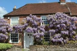 Wisteria Cottage, Castle Street, Portchester