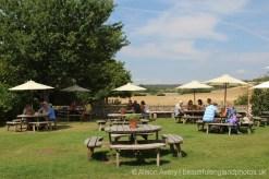 The Fox Goes Free pub garden, Charlton, near Singleton