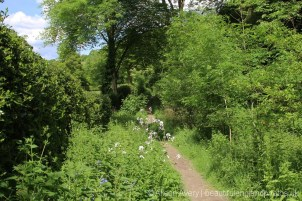 Footpath from Cadsden to Chequers