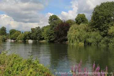 River Thames and Magna Carta Island, Runnymede